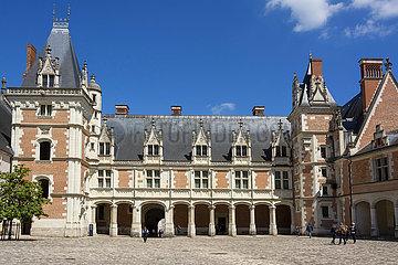 FRANCE - BLOIS CASTLE