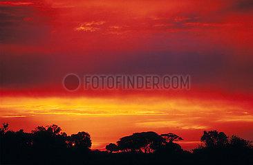 BOTSWANA Okavango Coucher de Soleil sur le delta