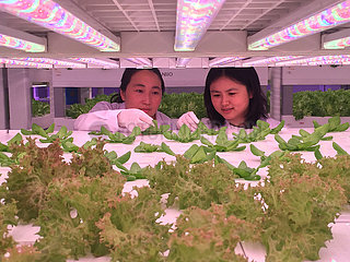 (SCI-TECH)CHINA-CAS-SCIENTISTS-RESEARCH-24 HOURS (CN)