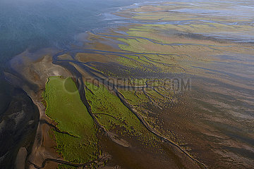 NAMIBIA  NAMIB DESERT  SEAFRONT  WALVIS BAY  SANDWICH HARBOUR
