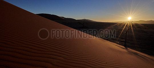 NAMIBIA  NAMIB DESERT  SOSSUSVLEI DUNES