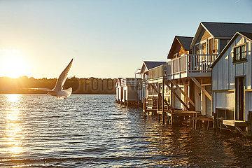 Canandaiga  Boathouses