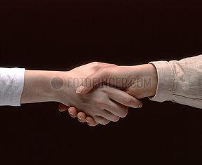 Zwei Frauen reichen sich die Hand (Detail: Haende)  zwei Frauenhaende  die Hand reichen