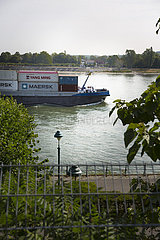 Containerschiff auf dem Rhein in Bonn