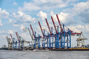 Ladekräne am Containerterminal des Hamburger Hafens