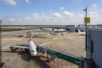 Flughafen Duesseldorf International  DUS  Flugzeuge von eurowings  Delta und air malta stehen am Terminalgebaeude  Nordrhein-Westfalen  Deutschland