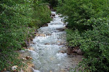 St. Magdalena  Villnoess  Trentino  Suedtirol  Gletscherbach und Baeume im Naturschutzgebiet Villnoesstal
