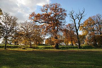 Der Drehberg im Herbst