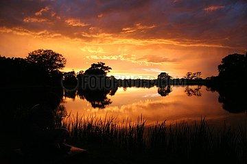 Romantik - Sonnenuntergang im Woerlitzer Park