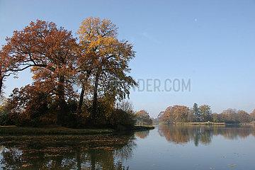 Herbst im Woerlitzer Park