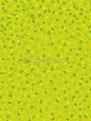 Blätterteppich  -tapete  -muster