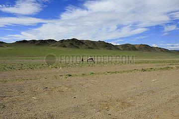 Nomade in der Westliche Mongolei.