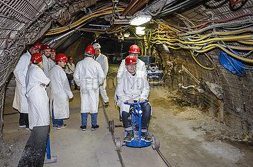 Steinkohle-Erlebnisbergwerk Recklinghausen  Ruhrgebiet  Nordrhein-Westfahlen  Deutschland