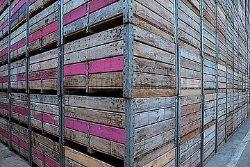 Stacks of crates on factory yard