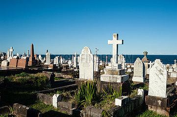 Sydney  Australien  Graeber auf dem Waverley Cemetery Friedhof zwischen Bronte und Clovelly