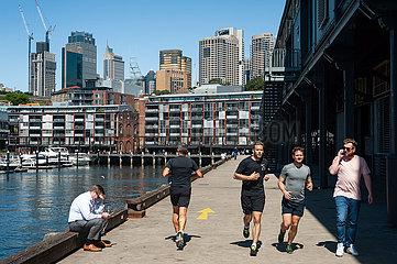 Sydney  Australien  Skyline des Geschaeftsviertels und Wohngebaeude am Ufer