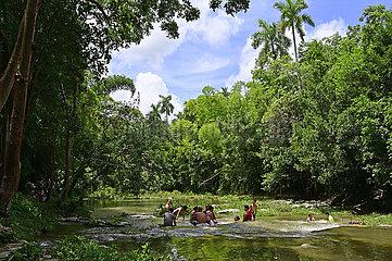 Cuba  Las Terrazas- UNESCO Biosphaerenreservat