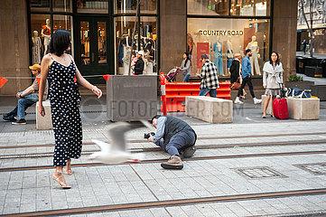 Sydney  Australien  Fotoshooting auf der George Street in der Innenstadt