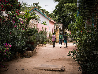 SENEGAL-DAKAR-Insel Gorée-LANDSCHAFT