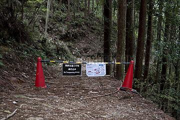Kumano Kodo Pilgrimage  Japan