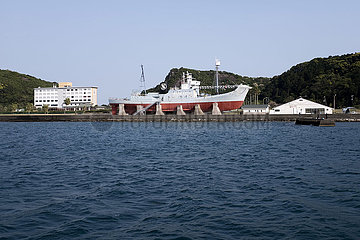 whale fishing  Japan