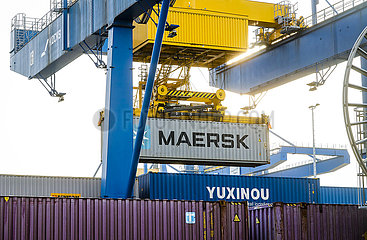 Duisburger Hafen  Maersk-Container  duisport logport  Ruhrgebiet  Nordrhein-Westfalen  Deutschland  Europa