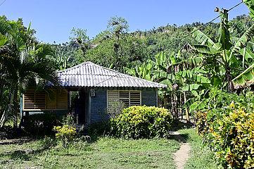 Kuba  Baracoa-Besuch einer Kakao und Bananenplantage