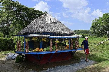 Cuba  Holguin- Obst und Gemusestand am Strassenrand auf dem Weg zum Flughafen