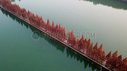 CHINA-HUNAN-CHANGSHA-NIANJIA LAKE Kulisse (CN)