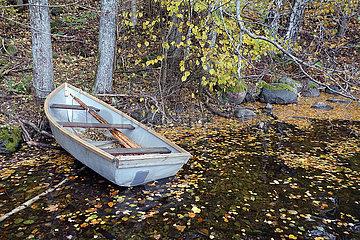 Braenna  Schweden  Leeres Ruderboot ist am Ufer eines Sees vertaeut
