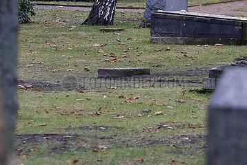 Oeffnung des vermeintlichen Grabes von Reinhard Heydrich  Invalidenfriedhof Berlin