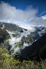 Insel  La Reunion  Plateau Nez de Boeuf