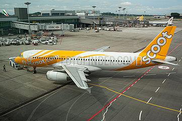 Singapur  Republik Singapur  A320 Passagierflugzeug der Scoot Airlines auf dem Flughafen Changi