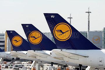 Frankfurt am Main  Deutschland  Seitenleitwerke von Flugzeugen der Lufthansa