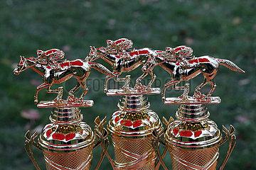 Magdeburg  Deutschland  Pokale fuer die Gewinner eines Galopprennens