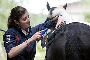 Bruemmerhof  Frau buerstet mittels Kunststoffschablone ein Rautenmuster auf die Hinterhand ihres Pferdes