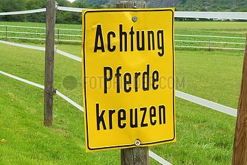 Warnung vor Pferden  die den Weg kreuzen. | Warning of horses crossing the path.