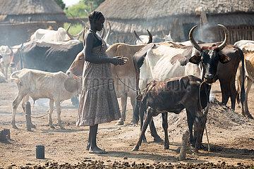 Belinkum  Gambela  Aethiopien - Traditionelle Viehzuechter  Nuer