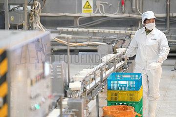 CHINA-HEILONGJIANG-HARBIN-TOFU Produktion (CN)
