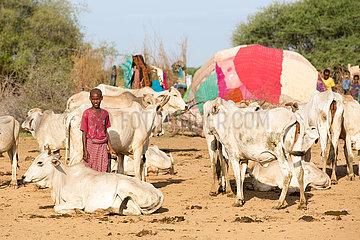 Burferedo  Somali Region  Aethiopien - Pastoralismus  Kuhhirte