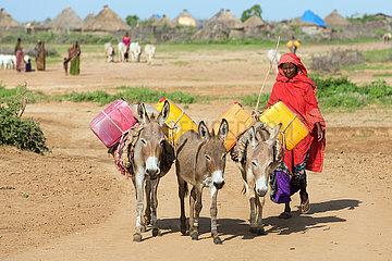 Burferedo  Somali Region  Aethiopien - Esel tragen Wasserkanister