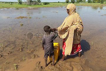 Burferedo  Somali Region  Aethiopien - Wasserholen an einer Wasserstelle