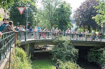 Entenrennen auf der Wieseck | Duck race on river Wieseck