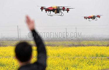 CHINA-JIANGXI-NANCHANG-Landwirtschaft (CN)