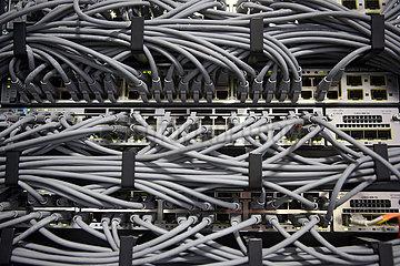 Berlin  Deutschland  Datenkabel in einem Rechenzentrum