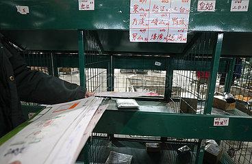 CHINA-SHENYANG-Logistics-WIEDERAUFNAHME (CN)