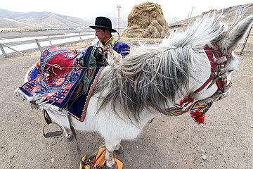 CHINA-GANSU-POVERTY ALLEVIATION-BREEDING-TOURISM-INDUSTRY (CN)