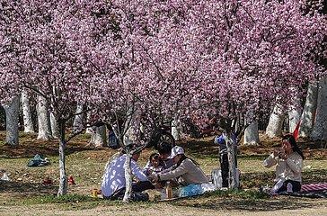 CHINA-JIANGSU-NANJING-SPRING-DAILY LIFE (CN)