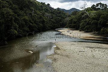 Rio Palomino