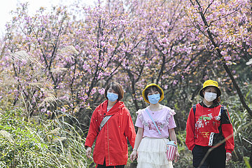 CHINA-CHONGQING-FANGNIUPING-DEVELOPMENT (CN)
